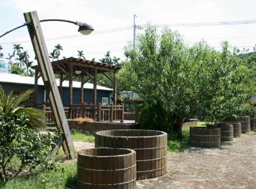 鶴岡文旦觀光果園-鶴崗村的柚子觀光果園