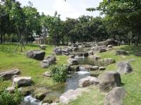 原生植物园