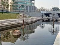 台中柳川水岸