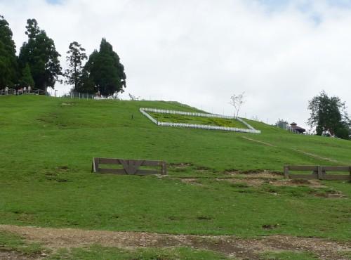 清境農場-青青草原