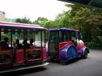 遊園車<br/> 攝影:amo