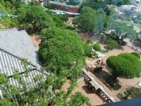 俯看安平古堡園區<br/> 攝影:Mimi