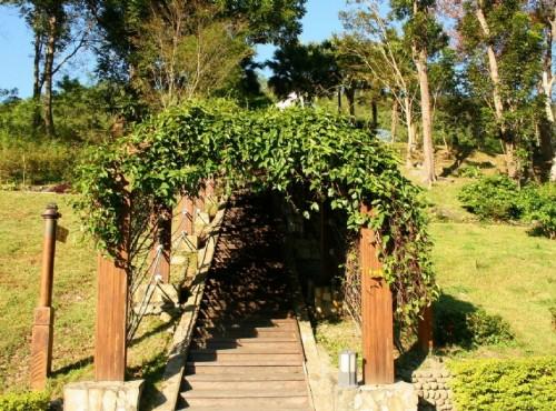 知本国家森林游乐区-綠色廊道