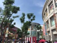 大魯閣草衙道入口前廣場<br/> 攝影:旅遊王攝影組