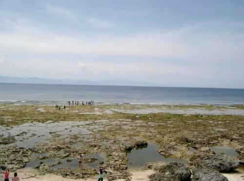 綠島海底公園