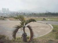 親情河濱公園
