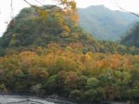 楓林區景觀<br/> 攝影:老山羊部落格