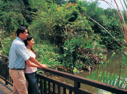 雙溪布洛自然公園-雙溪布洛自然公園