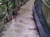 磺溪溫泉步道<br/> 攝影:Eva隨手拍