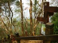 南線的陡坡步道入口<br/> 攝影:老山羊部落格