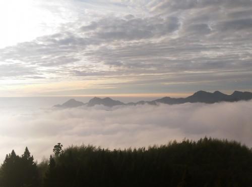 Alishan Forest Recreation Area-阿里山雲海