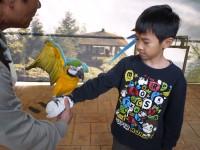 凤凰谷鸟园生态园区