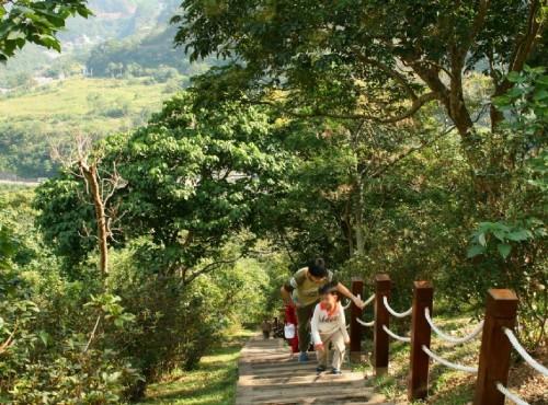 知本国家森林游乐区-榕蔭步道的遊客
