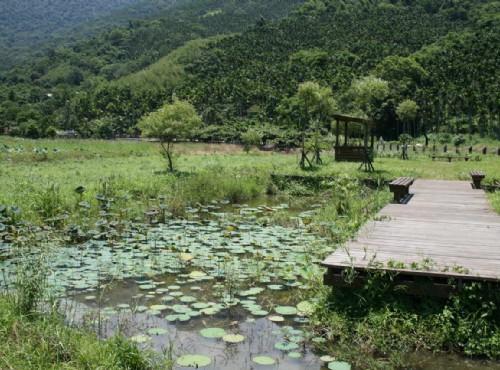 馬太鞍濕地生態園區