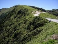 合歡主峰步道景色<br/> 攝影:老山羊部落格