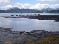 遙看湖景<br/> 攝影:老山羊部落格
