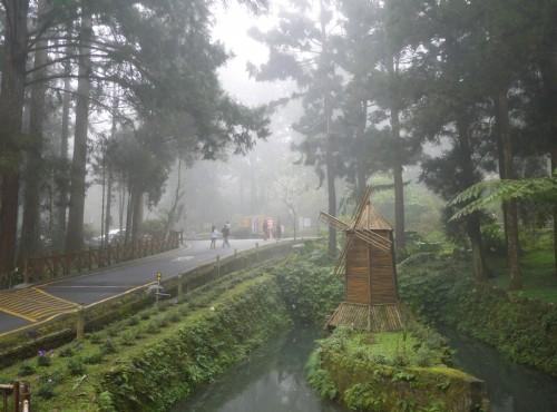 溪頭自然教育園區(溪頭森林遊樂區)-溪頭台大實驗林管理處