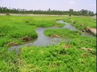 五溝水社區