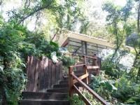 森林鸟花园