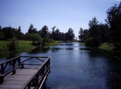 台東森林公園(黑森林)