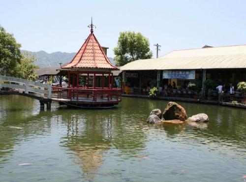 花蓮觀光糖廠(光復糖廠)-池塘&休憩亭