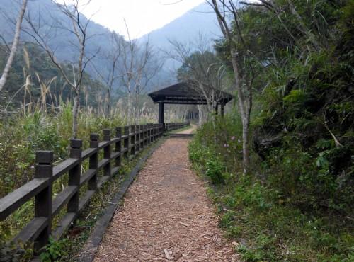 滿月圓國家森林遊樂區-木屑步道