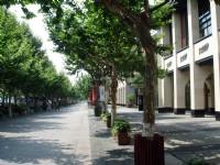 西湖-商店街<br/> 攝影:余錫堅