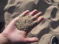 潔淨貝殼砂<br/> 攝影:三井