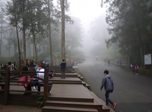 溪頭自然教育園區(溪頭森林遊樂區)-溪頭神木區休憩處