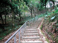 荷苞山登山步道