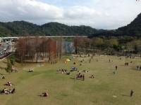 許多家庭在此玩耍野餐<br/> 攝影:陳皮梅