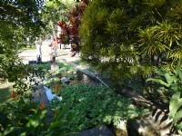 竹田驛園生態池<br/> 攝影:三個井