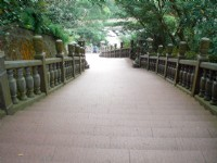 綠蔭步道<br/> 攝影:amo