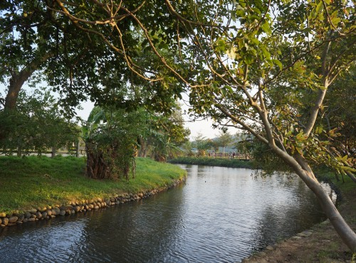 Longtan Pond Bike Lane
