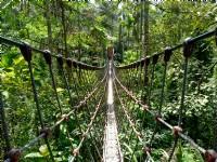 古坑情人桥与华山小天梯