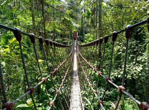 古坑情人橋與華山小天梯