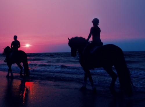 綠野馬場-沙灘牽乘