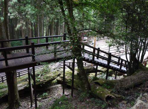 Alishan Forest Recreation Area-201407神木車站前木棧道