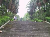 好長的階梯<br/> 攝影:kavin