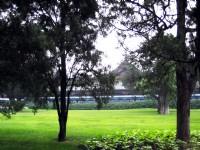 園內景色<br/> 攝影:方盛文