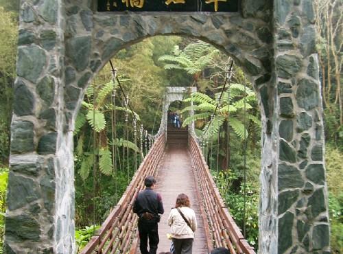 溪頭自然教育園區(溪頭森林遊樂區)-翠虹橋