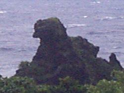 蘭嶼母雞岩