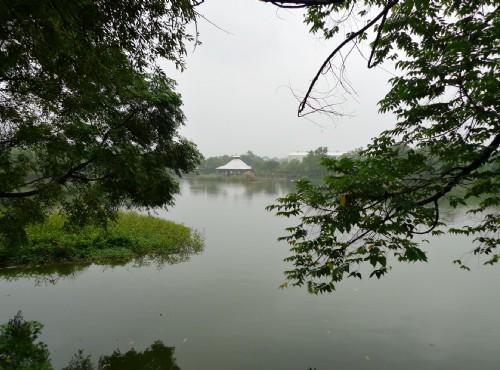 八德埤塘自然生態公園