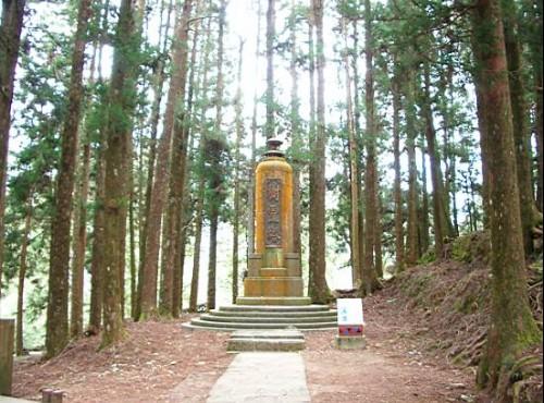 阿里山神木-樹靈塔