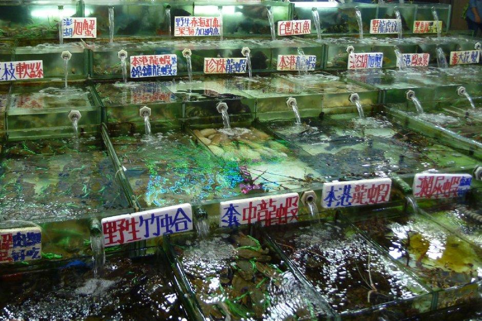 碧砂漁港有各式各樣的漁產/陳皮梅