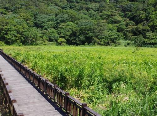 東源濕地是國家重要濕地 / Eva隨手拍