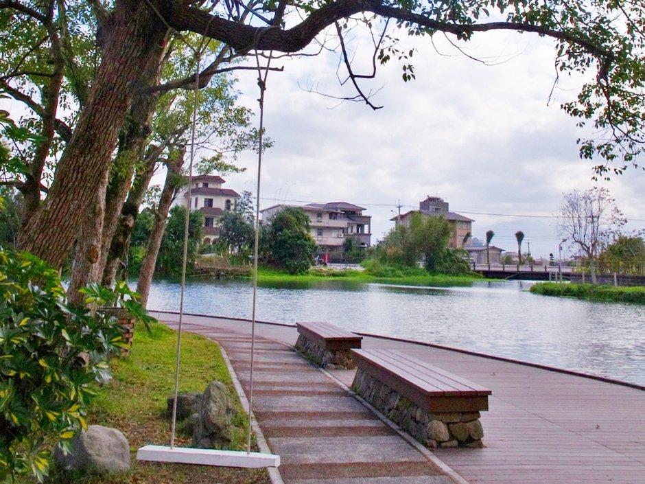 雷公埤是欣賞落羽松的私房景點 / Eva隨手拍