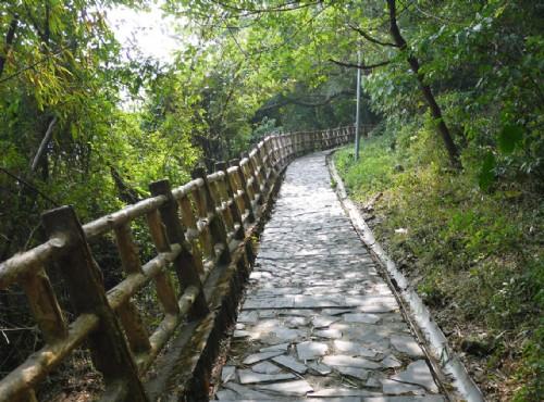 茂林國家風景區生態公園/Jacky