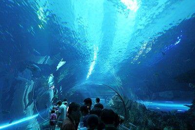 屏東車城國立海洋生物博物館 / Jacky