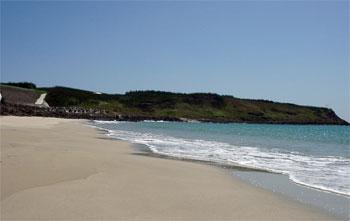 大池沙灘  (圖片提供:joelin)